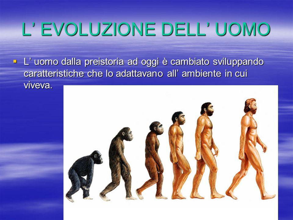 L' EVOLUZIONE DELL' UOMO  L' uomo dalla preistoria ad oggi è cambiato sviluppando caratteristiche che lo adattavano all' ambiente in cui viveva.