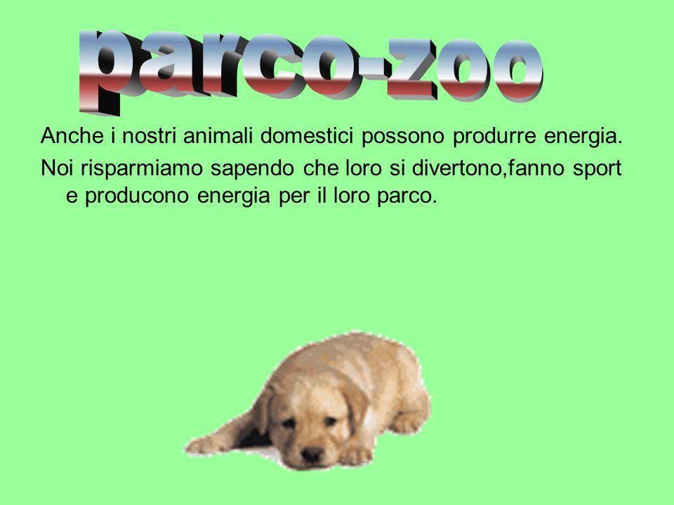 Anche i nostri animali domestici possono produrre energia.