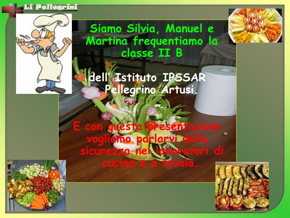 Li Pellegrini Siamo Silvia, Manuel e Martina frequentiamo la classe II B dell' Istituto IPSSAR Pellegrino Artusi. E con questa presentazione vogliamo