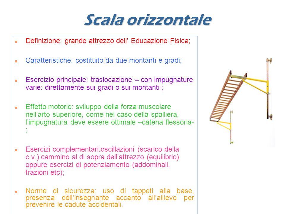 Scala orizzontale Definizione: grande attrezzo dell' Educazione Fisica; Caratteristiche: costituito da due montanti e gradi; Esercizio principale: traslocazione – con impugnature varie: direttamente sui gradi o sui montanti-; Effetto motorio: sviluppo della forza muscolare nell'arto superiore, come nel caso della spalliera, l'impugnatura deve essere ottimale –catena flessoria- ; Esercizi complementari:oscillazioni (scarico della c.v.) cammino al di sopra dell'attrezzo (equilibrio) oppure esercizi di potenziamento (addominali, trazioni etc); Norme di sicurezza: uso di tappeti alla base, presenza dell'insegnante accanto all'allievo per prevenire le cadute accidentali.