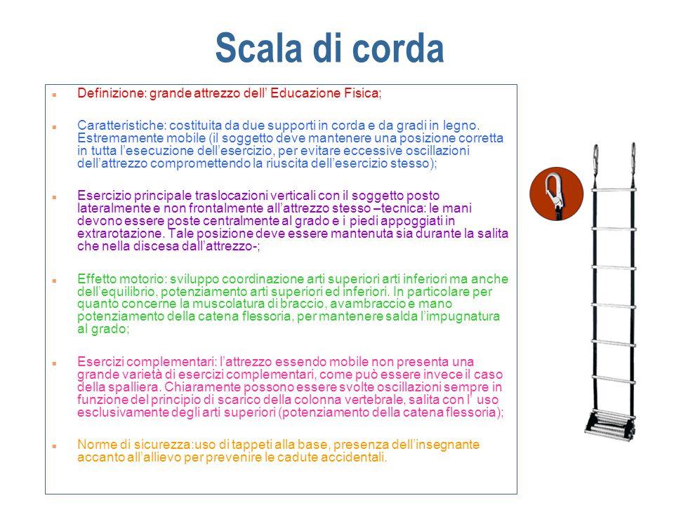 Scala di corda Definizione: grande attrezzo dell' Educazione Fisica; Caratteristiche: costituita da due supporti in corda e da gradi in legno.