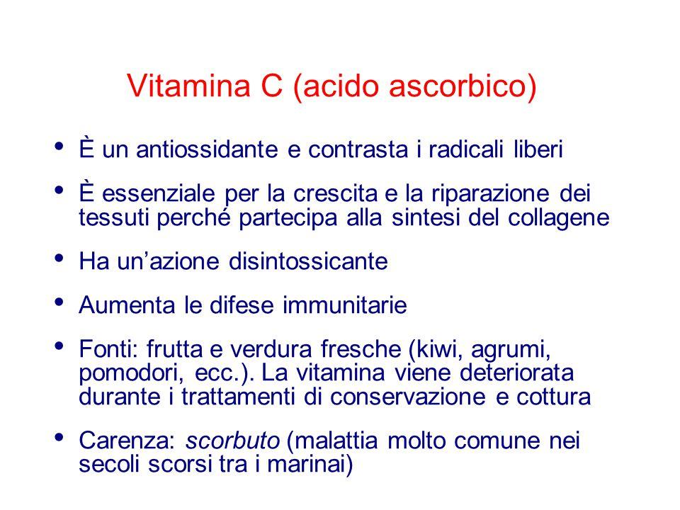 Vitamina C (acido ascorbico) È un antiossidante e contrasta i radicali liberi È essenziale per la crescita e la riparazione dei tessuti perché parteci