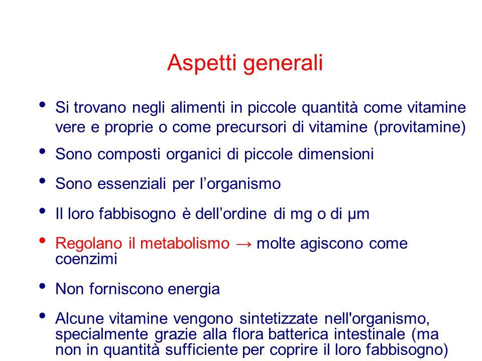 Aspetti generali Si trovano negli alimenti in piccole quantità come vitamine vere e proprie o come precursori di vitamine (provitamine) Sono composti