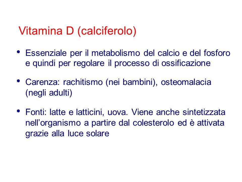 Vitamina D (calciferolo) Essenziale per il metabolismo del calcio e del fosforo e quindi per regolare il processo di ossificazione Carenza: rachitismo