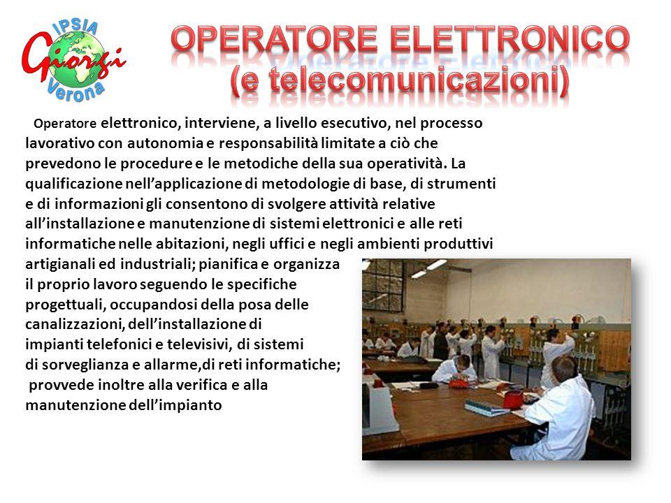 ' Operatore elettronico, interviene, a livello esecutivo, nel processo lavorativo con autonomia e responsabilità limitate a ciò che prevedono le procedure e le metodiche della sua operatività.