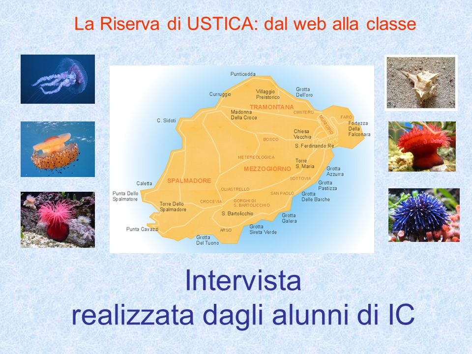 Intervista realizzata dagli alunni di IC La Riserva di USTICA: dal web alla classe