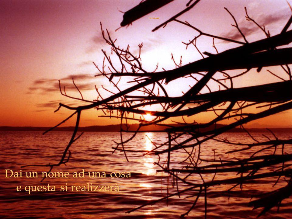 Forse Dio desidera che nel corso della tua vita tu incontri tante persone false, affinchè, nel momento in cui ti imbatti in quelle giuste, tu le sappia poi anche apprezzare e sia riconoscente per la loro esistenza nella tua vita