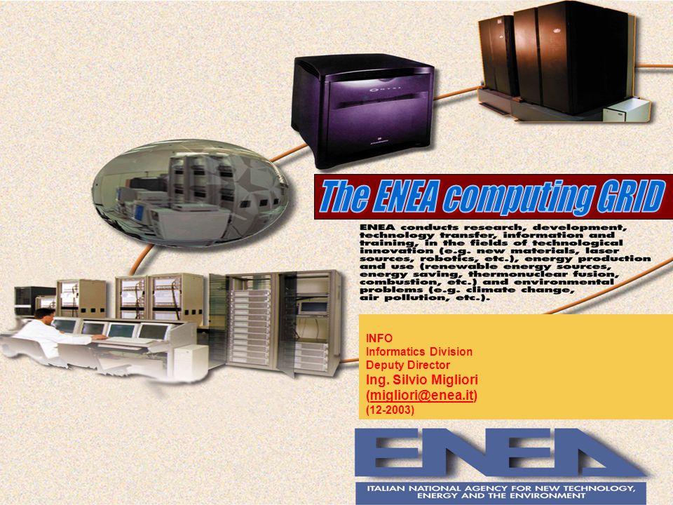 ENEA GRID Main Service CPUs : 500 GFlopsCPUs : 500 GFlops Main Computational Code :Main Computational Code : Nuclear, FEM, CFD, Electromagnetic, …….
