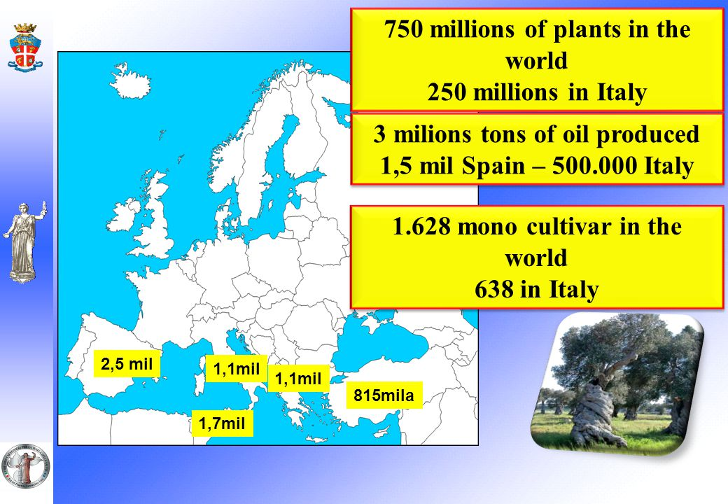 OLIVE OIL SUPPLY CHAIN FRAUDS AND ADULTERATIONS POSE A SERIOUS THREAT 250 milions of plants at national level 50 millions working days 2 Billions gross euros 43 Italian DPO olive oils reconized by EU Source UNAPROL