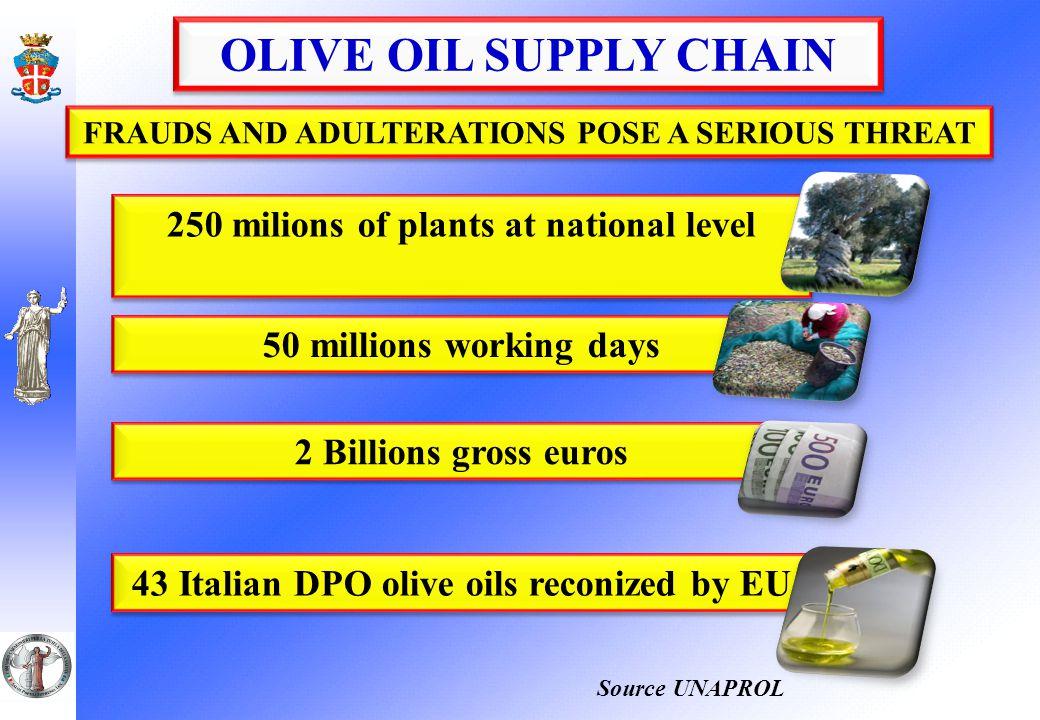 FILIERA DELL'OLIO Olive oil prices Car care healthcare