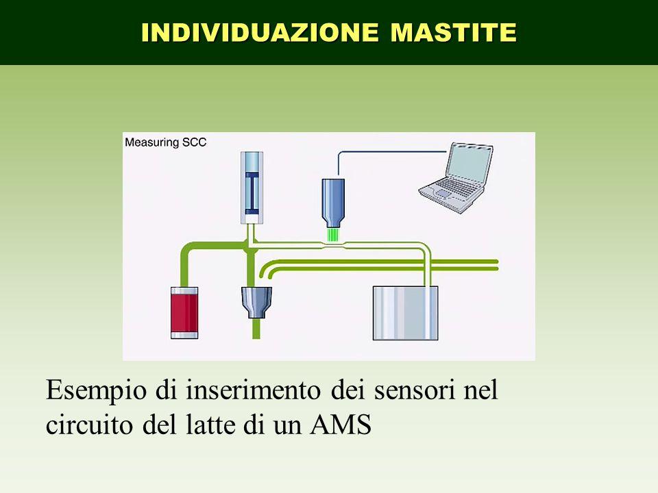 Esempio di inserimento dei sensori nel circuito del latte di un AMS INDIVIDUAZIONE MASTITE
