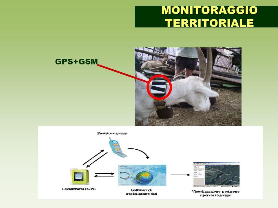 GPS+GSM MONITORAGGIO TERRITORIALE