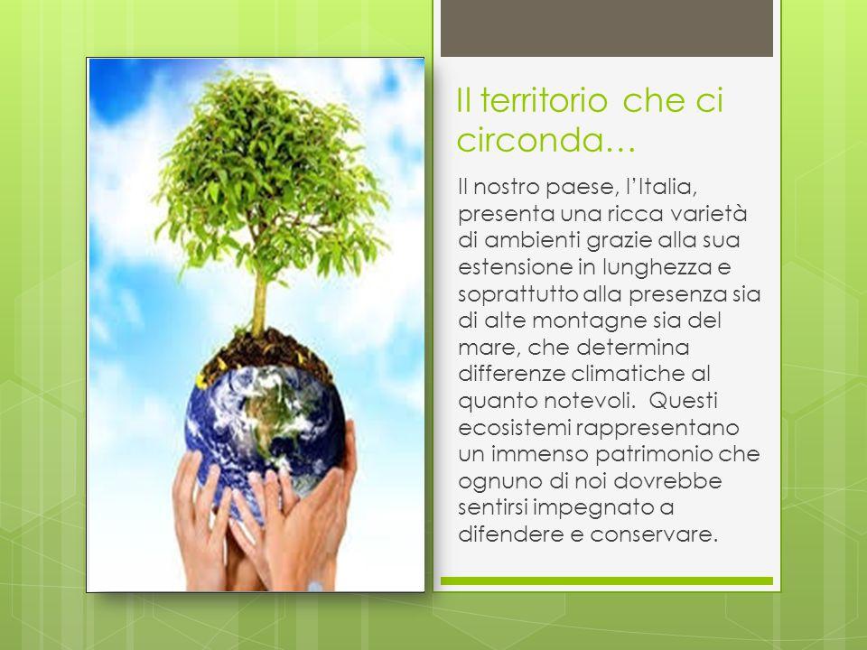 Il territorio che ci circonda… Il nostro paese, l'Italia, presenta una ricca varietà di ambienti grazie alla sua estensione in lunghezza e soprattutto alla presenza sia di alte montagne sia del mare, che determina differenze climatiche al quanto notevoli.