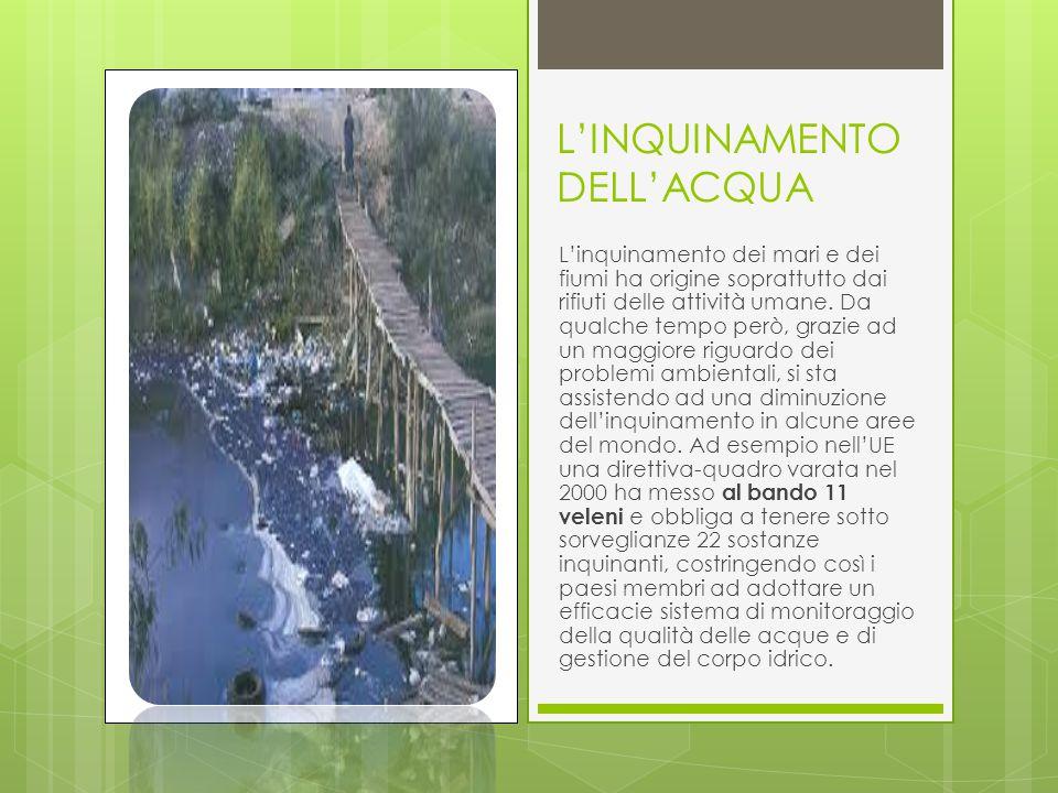 L'INQUINAMENTO DELL'ACQUA L'inquinamento dei mari e dei fiumi ha origine soprattutto dai rifiuti delle attività umane.