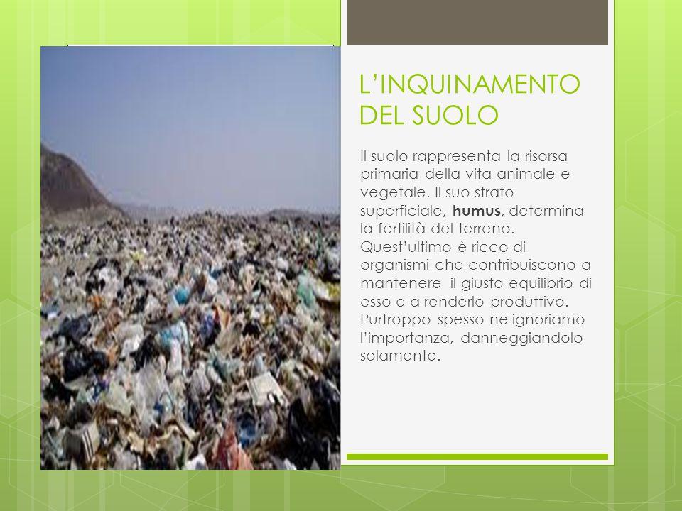 L'INQUINAMENTO DEL SUOLO Il suolo rappresenta la risorsa primaria della vita animale e vegetale.