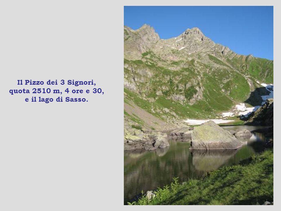 Verso il rifugio Santa Rita, seconda tappa, quota 2000 m, 1 ora e 30, e tutto va bene.