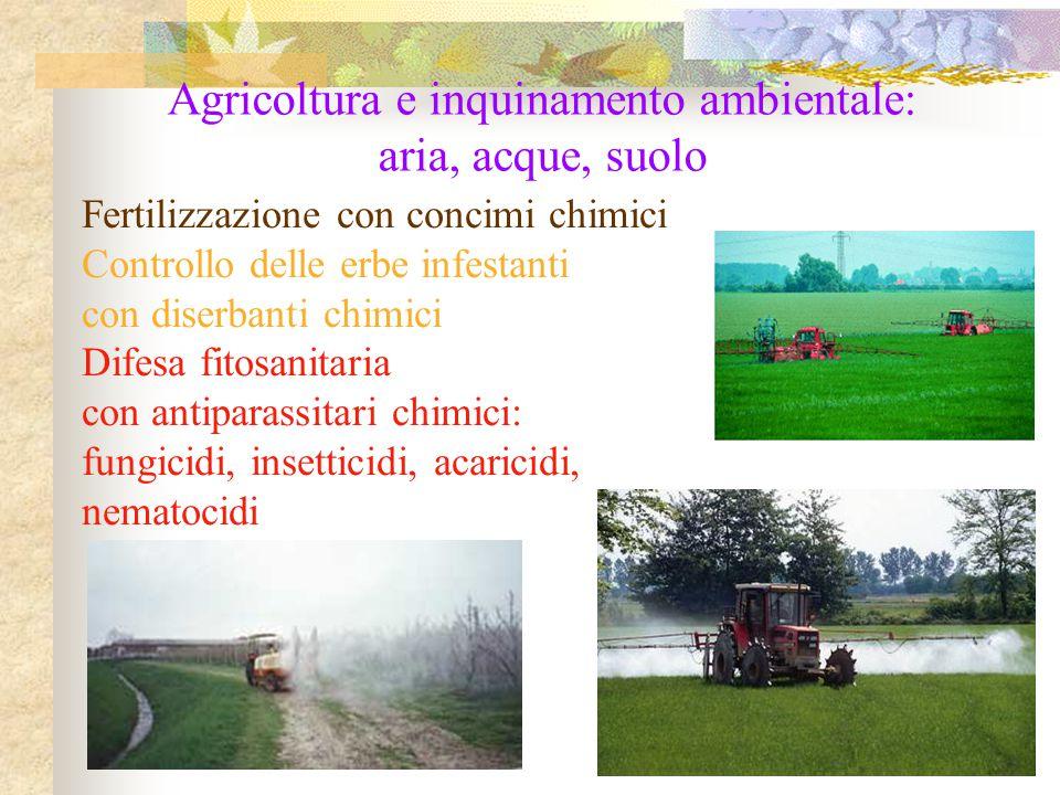 Fertilizzazione con concimi chimici Controllo delle erbe infestanti con diserbanti chimici Difesa fitosanitaria con antiparassitari chimici: fungicidi