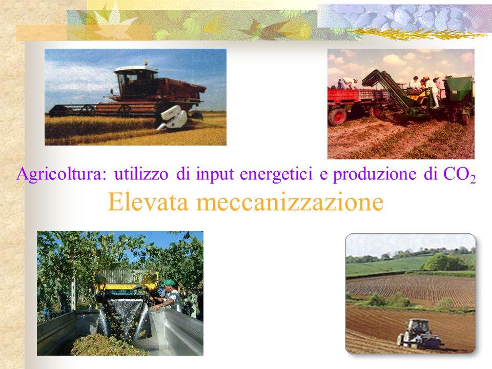 Agricoltura: utilizzo di input energetici e produzione di CO 2 Elevata meccanizzazione