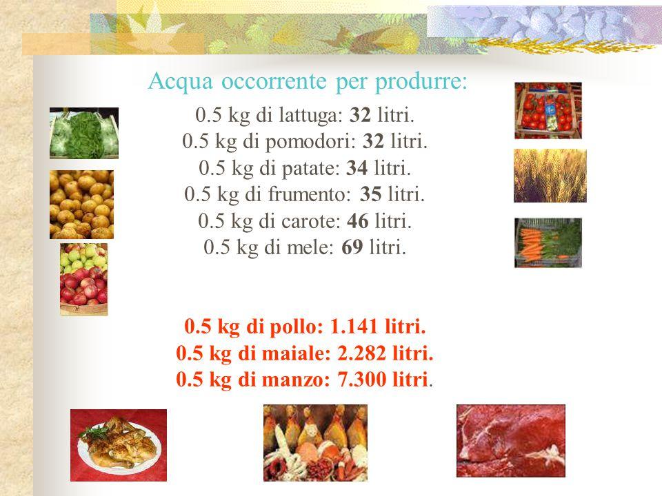 0.5 kg di lattuga: 32 litri. 0.5 kg di pomodori: 32 litri. 0.5 kg di patate: 34 litri. 0.5 kg di frumento: 35 litri. 0.5 kg di carote: 46 litri. 0.5 k