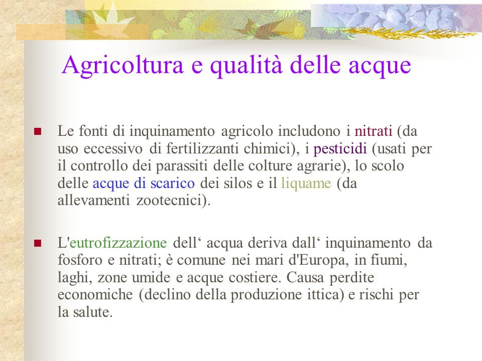 Agricoltura e qualità delle acque Le fonti di inquinamento agricolo includono i nitrati (da uso eccessivo di fertilizzanti chimici), i pesticidi (usat