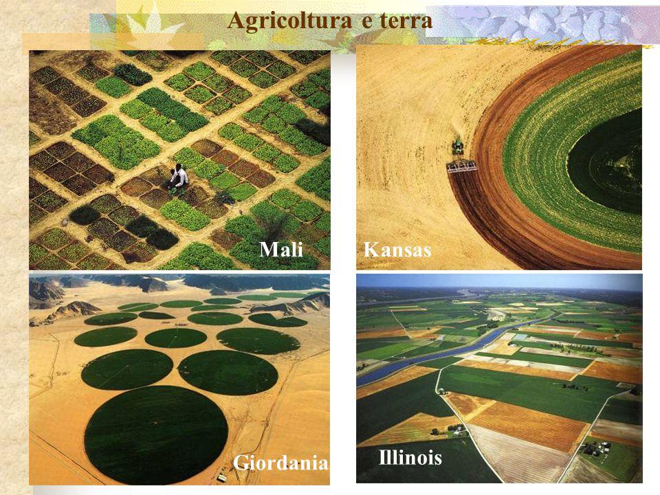 Agricoltura e terra MaliKansas Giordania Illinois