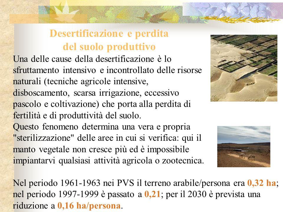 Desertificazione e perdita del suolo produttivo Una delle cause della desertificazione è lo sfruttamento intensivo e incontrollato delle risorse natur