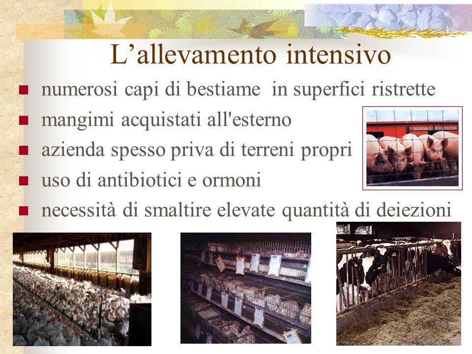 L'allevamento intensivo numerosi capi di bestiame in superfici ristrette mangimi acquistati all'esterno azienda spesso priva di terreni propri uso di