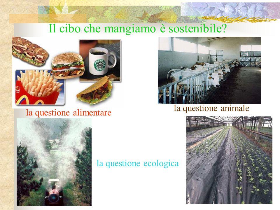 la questione animale Il cibo che mangiamo è sostenibile? la questione alimentare la questione ecologica