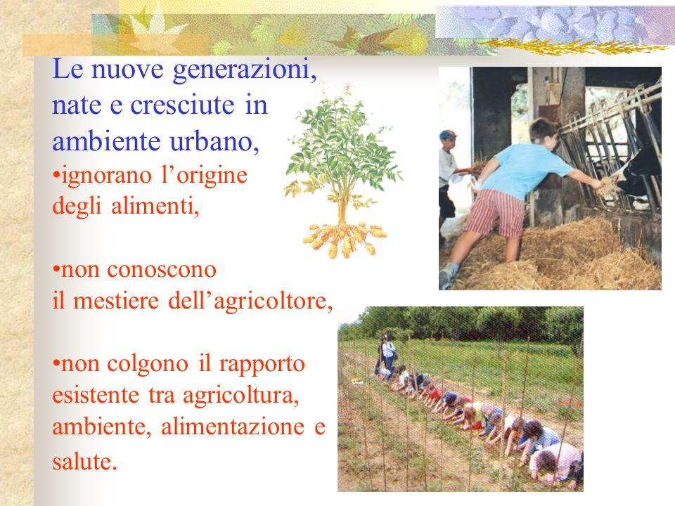 Le nuove generazioni, nate e cresciute in ambiente urbano, ignorano l'origine degli alimenti, non conoscono il mestiere dell'agricoltore, non colgono
