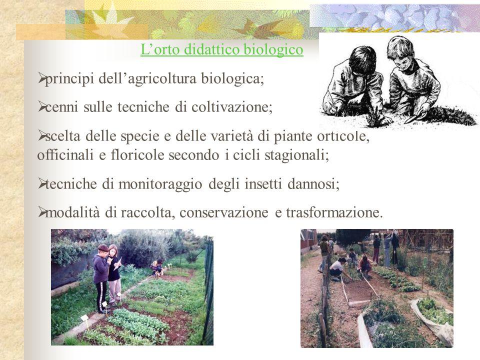 L'orto didattico biologico  principi dell'agricoltura biologica;  cenni sulle tecniche di coltivazione;  scelta delle specie e delle varietà di pia