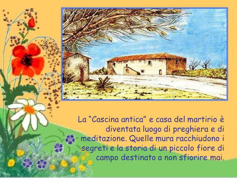 Nella pace di un convento di cappuccini, Alessandro è vissuto fino alla morte avvenuta nel 1978.