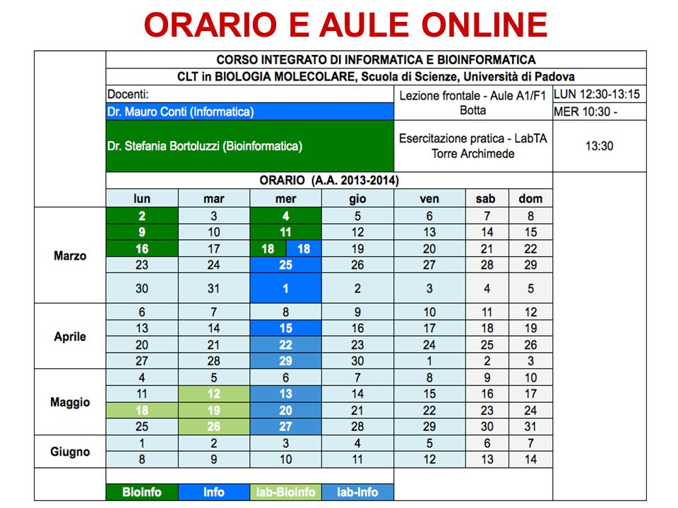 ORARIO E AULE ONLINE