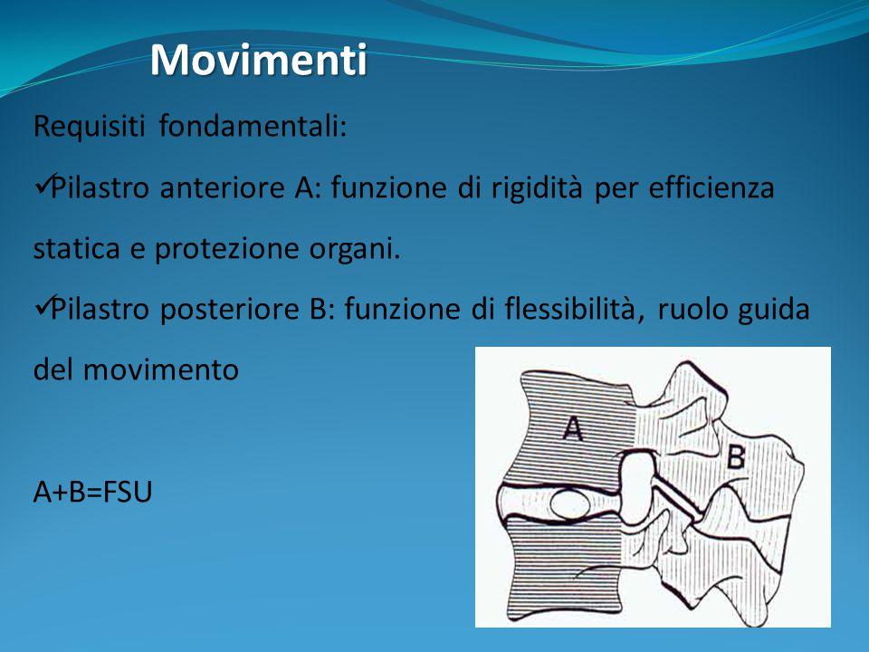 Movimenti Requisiti fondamentali: Pilastro anteriore A: funzione di rigidità per efficienza statica e protezione organi. Pilastro posteriore B: funzio