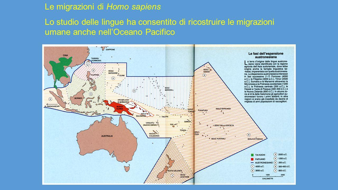 Le migrazioni di Homo sapiens Lo studio delle lingue ha consentito di ricostruire le migrazioni umane anche nell'Oceano Pacifico