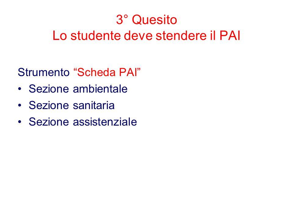 """3° Quesito Lo studente deve stendere il PAI Strumento """"Scheda PAI"""" Sezione ambientale Sezione sanitaria Sezione assistenziale"""
