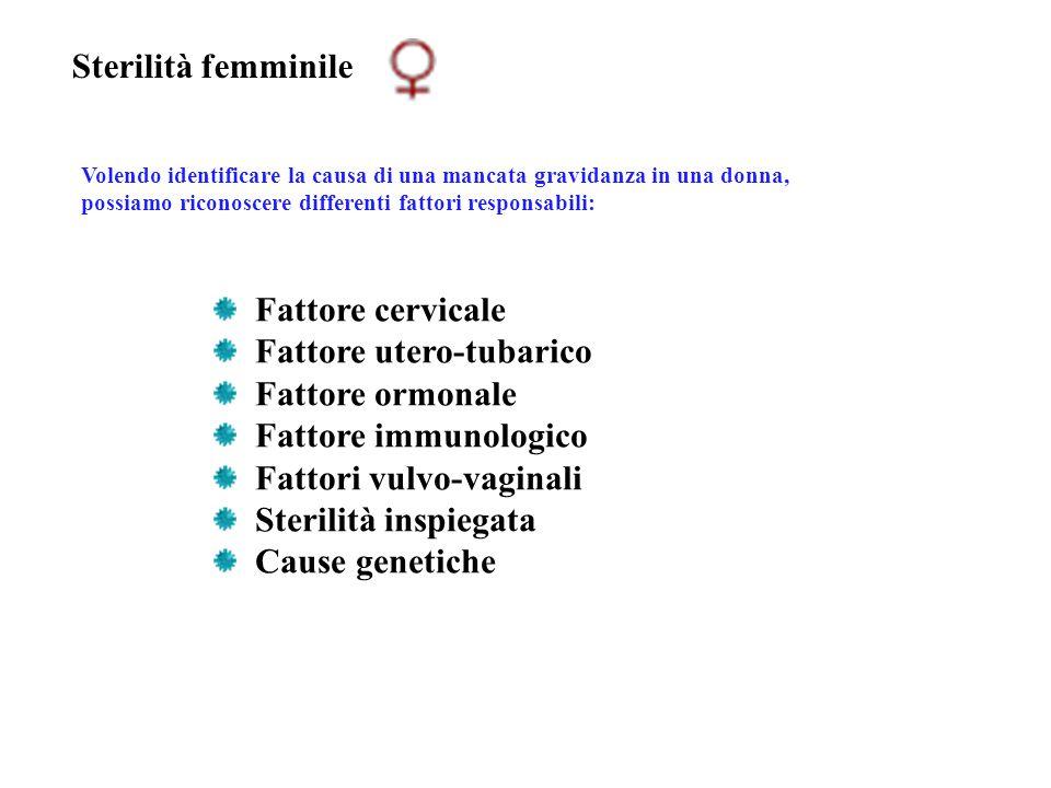 Sterilità femminile Volendo identificare la causa di una mancata gravidanza in una donna, possiamo riconoscere differenti fattori responsabili: Fattor