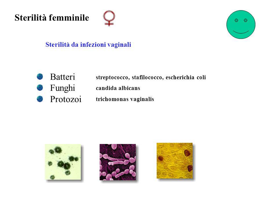 Sterilità femminile Sterilità da infezioni vaginali streptococco, stafilococco, escherichia coli Batteri Funghi Protozoi candida albicans trichomonas