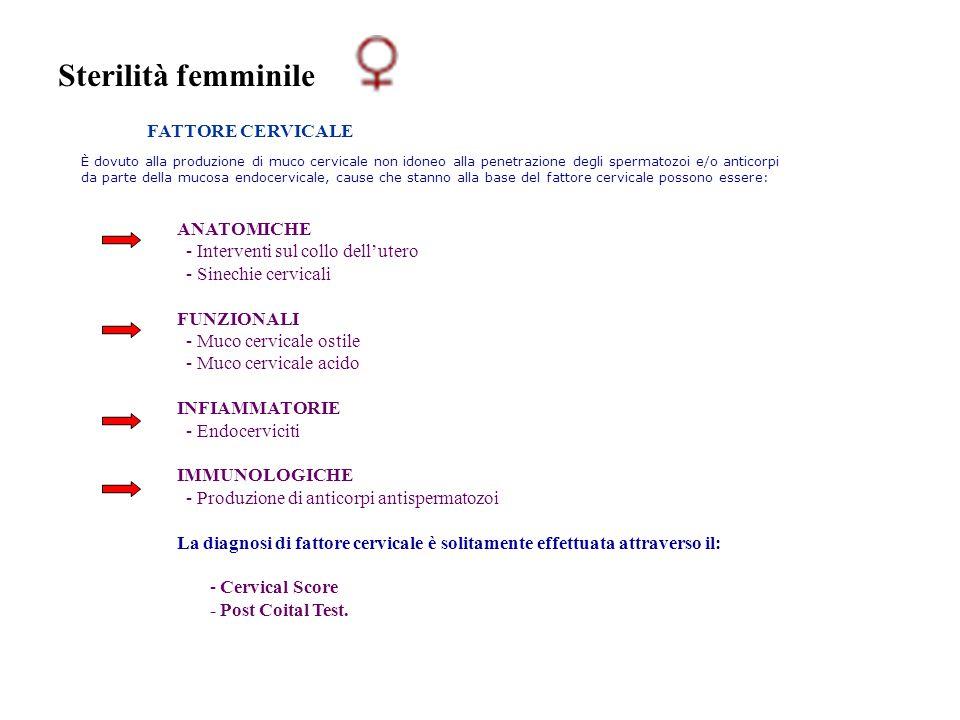 Sterilità femminile FATTORE CERVICALE È dovuto alla produzione di muco cervicale non idoneo alla penetrazione degli spermatozoi e/o anticorpi da parte
