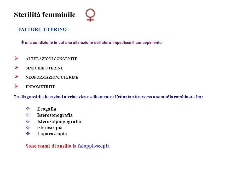 Sterilità femminile FATTORE UTERINO È una condizione in cui una alterazione dell'utero impedisce il concepimento  ALTERAZIONI CONGENITE  SINECHIE UT