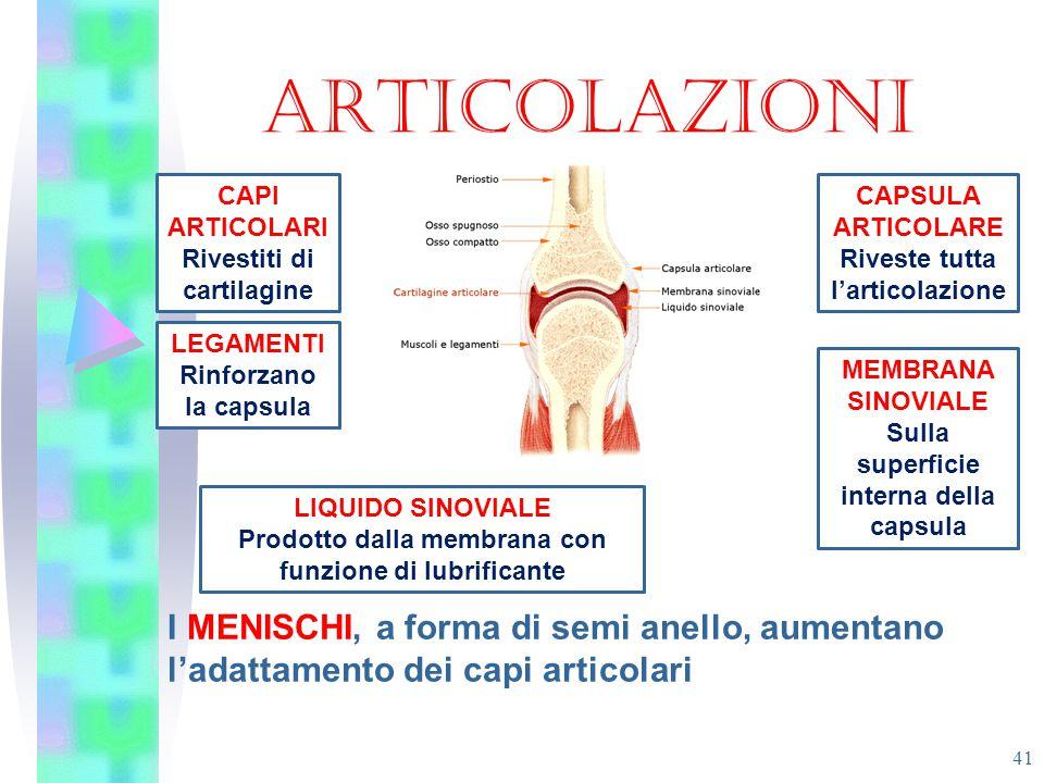 ARTICOLAZIONI I MENISCHI, a forma di semi anello, aumentano l'adattamento dei capi articolari 41 CAPI ARTICOLARI Rivestiti di cartilagine CAPSULA ARTI
