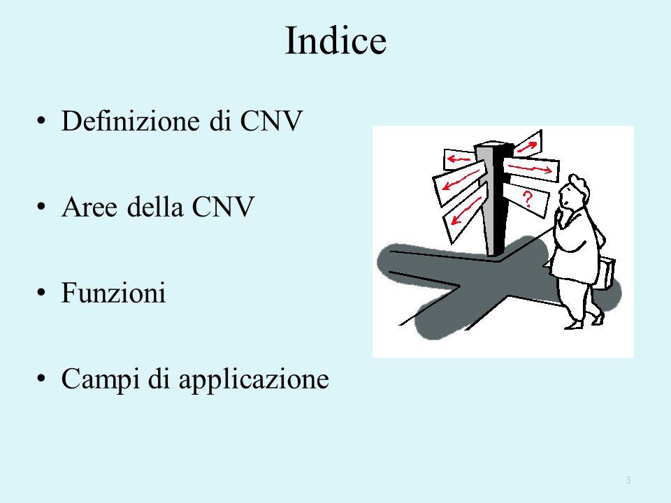 Indice Definizione di CNV Aree della CNV Funzioni Campi di applicazione 3