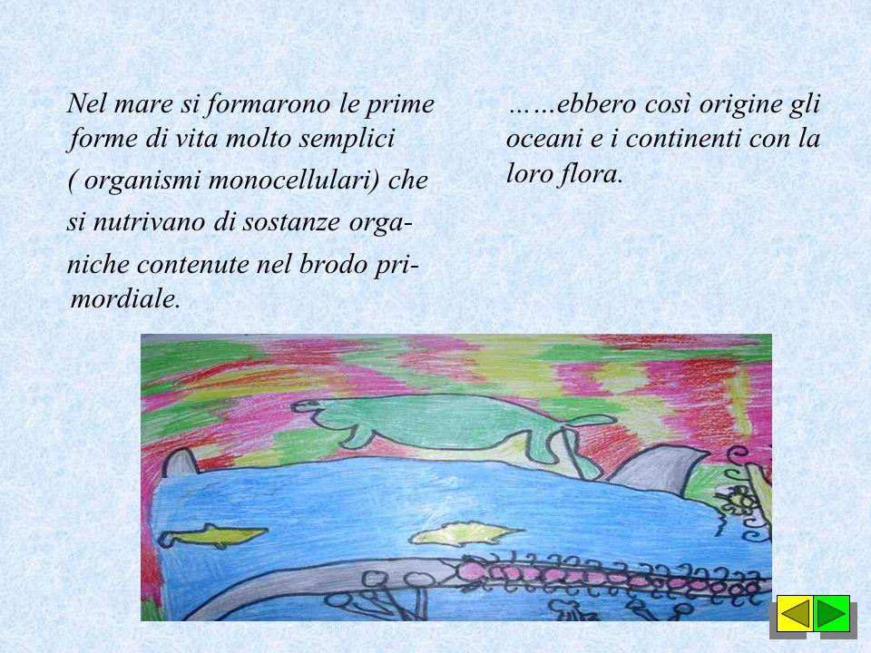 Nel mare si formarono le prime forme di vita molto semplici ( organismi monocellulari) che si nutrivano di sostanze orga- niche contenute nel brodo pri- mordiale....…ebbero così origine gli oceani e i continenti con la loro flora.