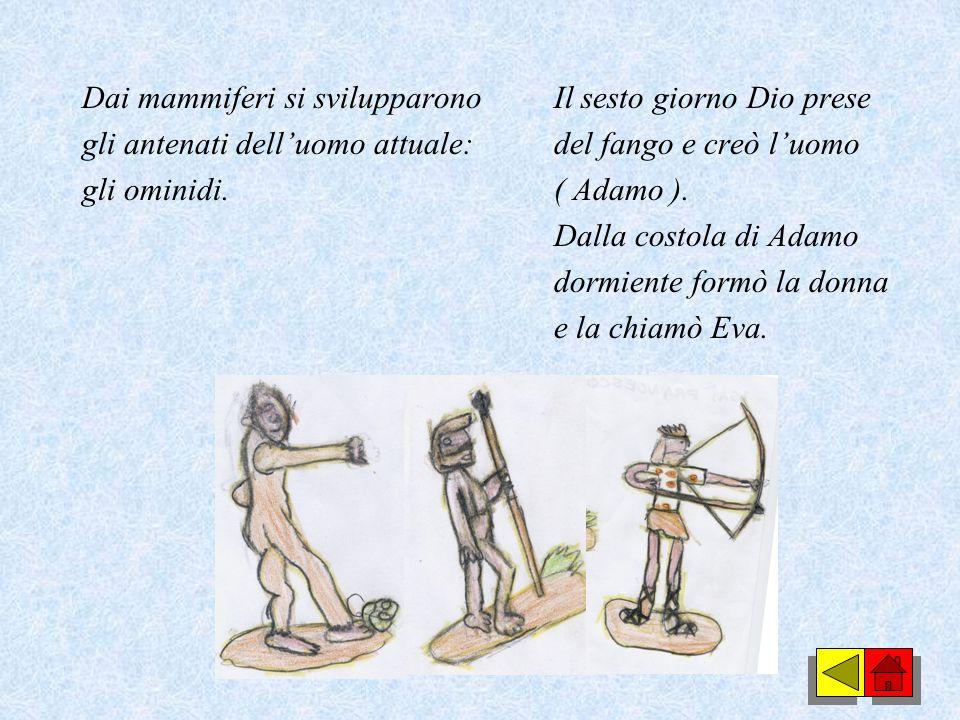 Dai mammiferi si svilupparono gli antenati dell'uomo attuale: gli ominidi.
