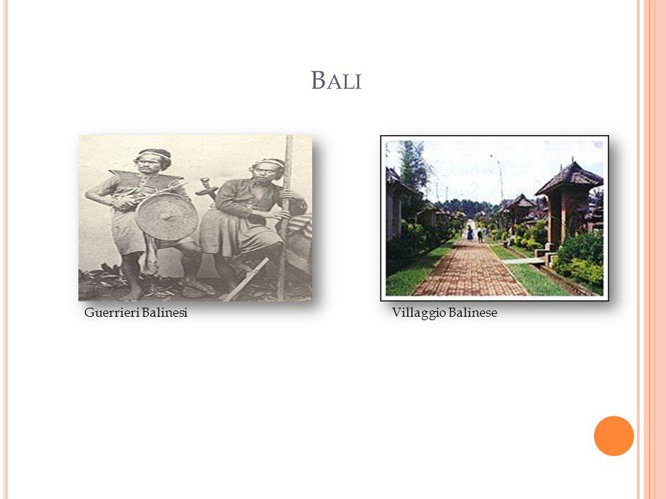 B ALI Guerrieri BalinesiVillaggio Balinese