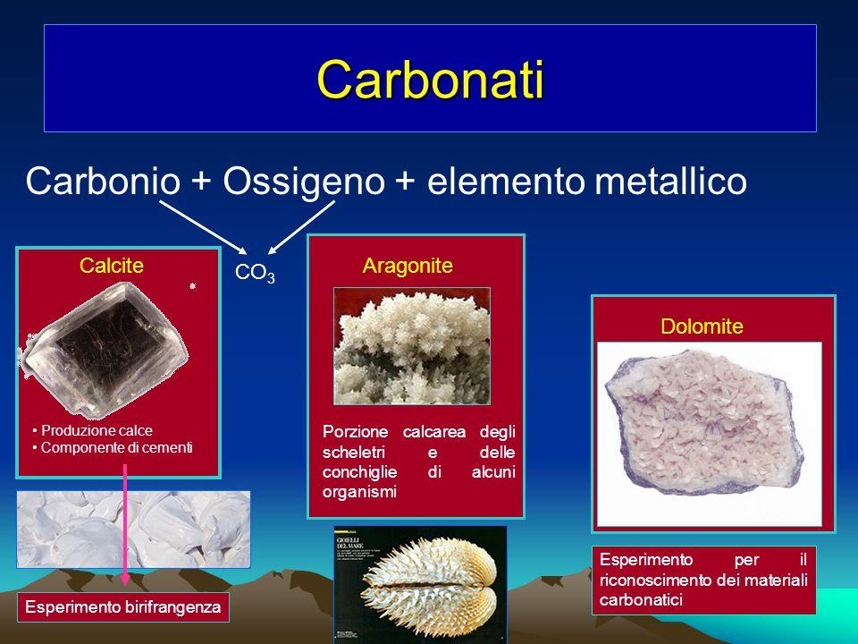 Carbonati Carbonio + Ossigeno + elemento metallico CO 3 CalciteAragonite Porzione calcarea degli scheletri e delle conchiglie di alcuni organismi Prod