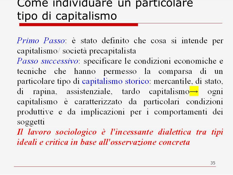 35 Come individuare un particolare tipo di capitalismo