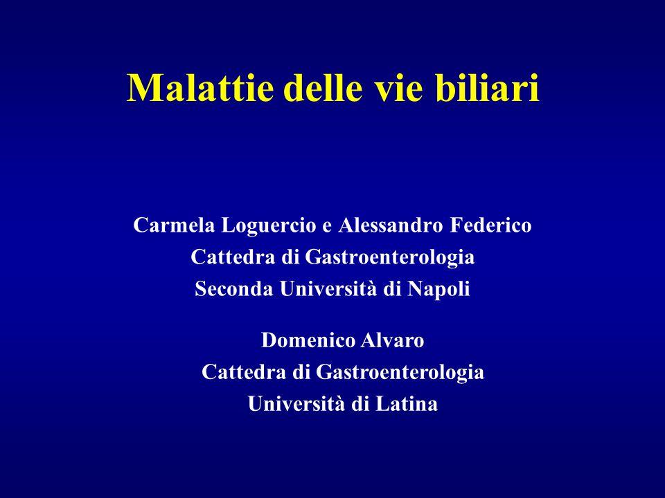 Malattie delle vie biliari Carmela Loguercio e Alessandro Federico Cattedra di Gastroenterologia Seconda Università di Napoli Domenico Alvaro Cattedra