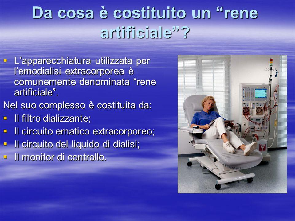 """Da cosa è costituito un """"rene artificiale""""?  L'apparecchiatura utilizzata per l'emodialisi extracorporea è comunemente denominata """"rene artificiale""""."""