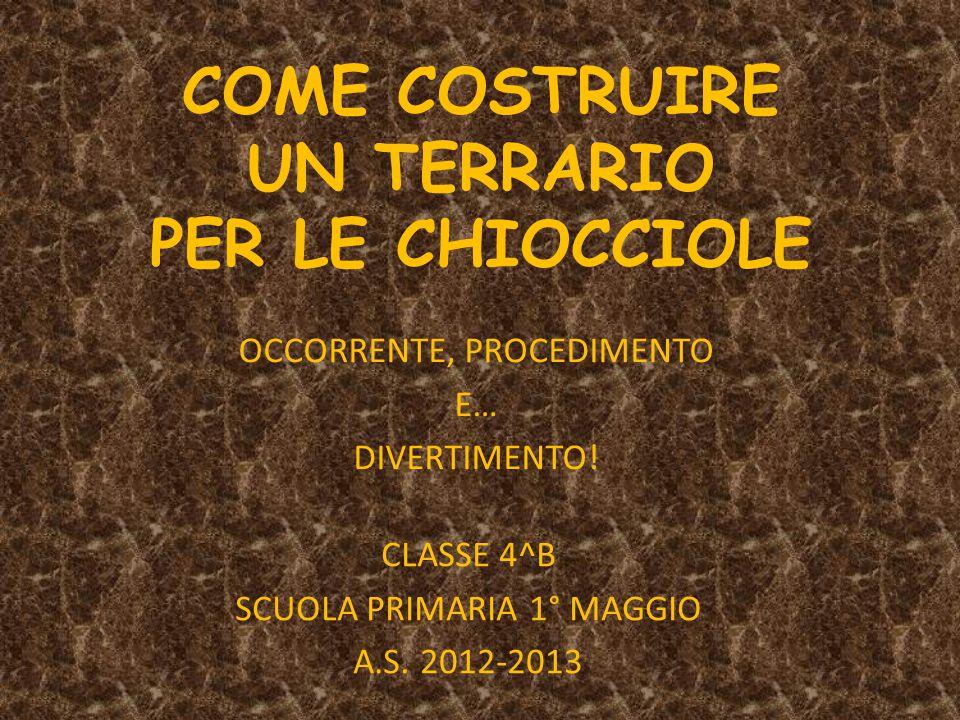 COME COSTRUIRE UN TERRARIO PER LE CHIOCCIOLE OCCORRENTE, PROCEDIMENTO E… DIVERTIMENTO! CLASSE 4^B SCUOLA PRIMARIA 1° MAGGIO A.S. 2012-2013