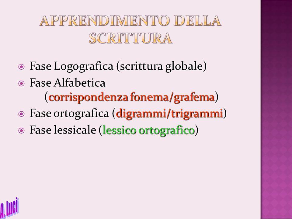  Fase Logografica (scrittura globale)  Fase Alfabetica (corrispondenza fonema/grafema)  Fase ortografica (digrammi/trigrammi)  Fase lessicale (les